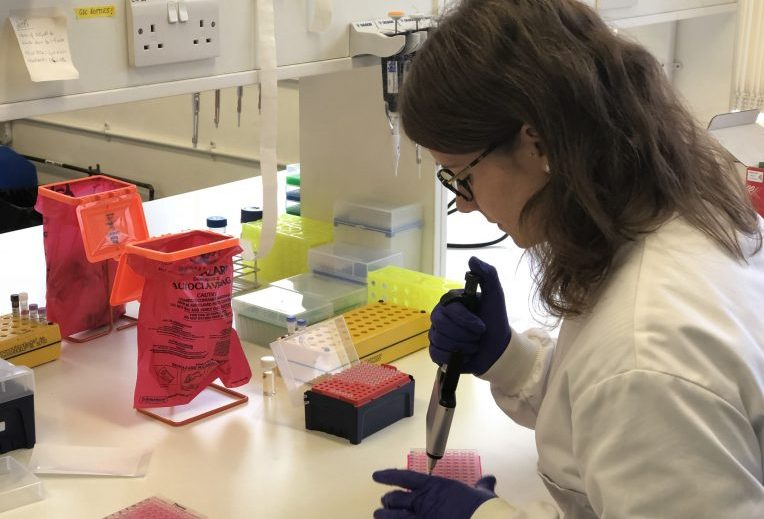A research scientist with a pipette
